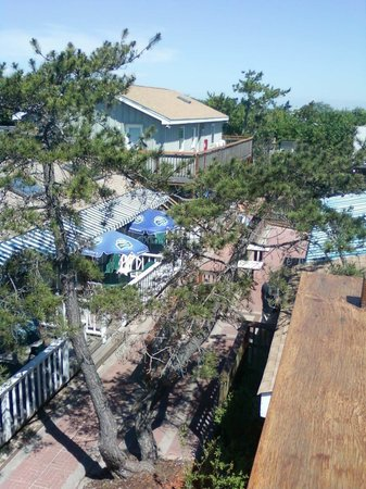 Fire Island Hotel and Resort: beach path between the hotel and the hotel's cottages