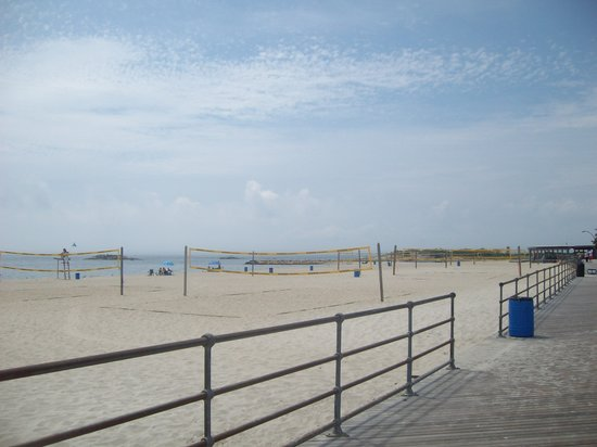 Ocean Beach Park : OBP