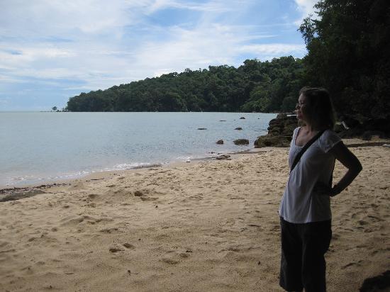 Damai Puri Resort & Spa: Small beach on edge of rainforest