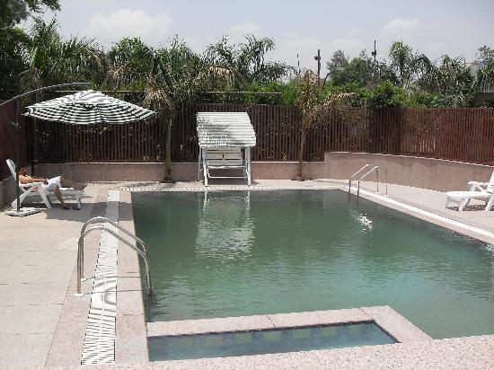 The Green Villa : Swiming Pool