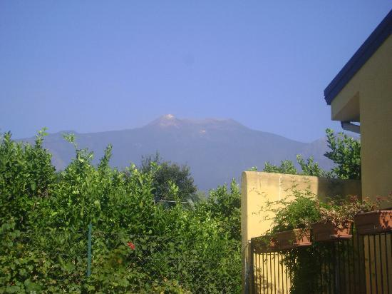 Giarre, Italy: view on mount Etna from the azienda