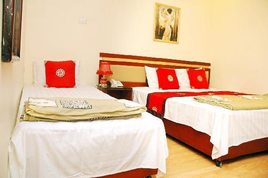Van Hoa Hotel: dulexroom