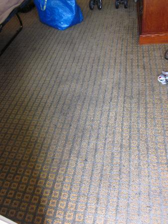Cortona Inn & Suites Anaheim Resort: Filthy old carpets