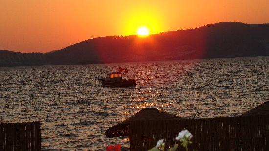 Gulluk, Turquie : Güllük sunset