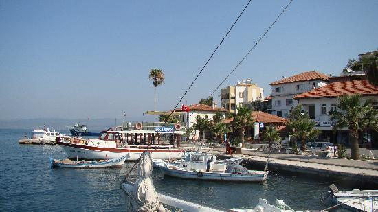 Gulluk, Turquía: Boats by the marina