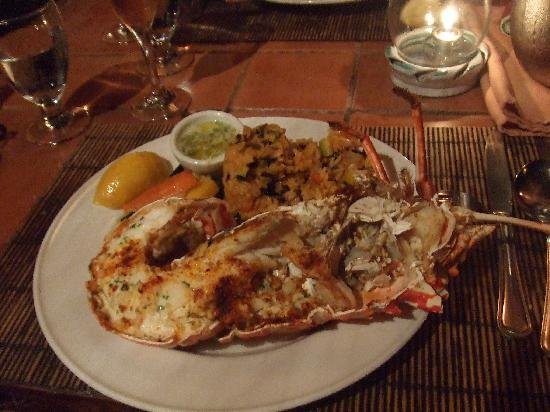 Cocobay Resort: Lobster dinner at the restaurant - very yummy!