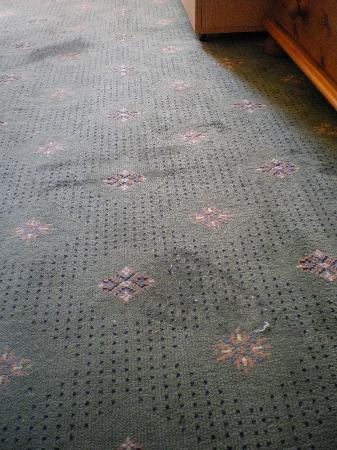 Kantara Guest House: Burnt (??) carpet