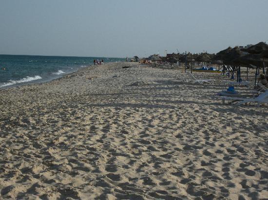 Dar Zakarya : la plage à 300 mètres de l'hôtel