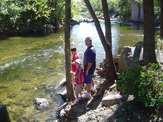 Richard E Klatt Memorial Field: Big Rock Creek