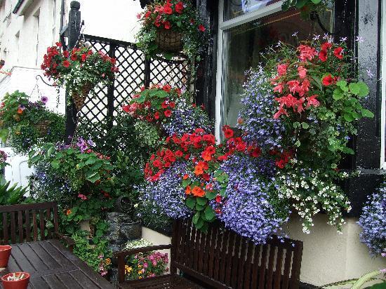 The Edenfield Guest House: Garden - In Bloom