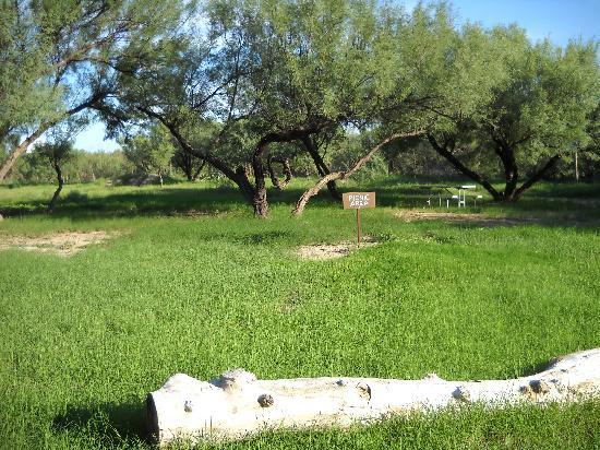 Castolon Campground: campground