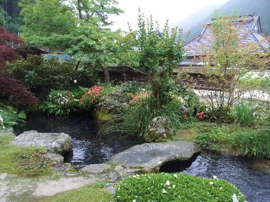 Hirasanso : 鯉の池