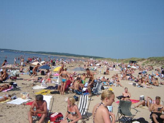 Strand Halmstad in der Hochsaison
