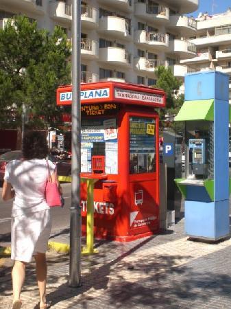Hotel Oasis Park : bus stop