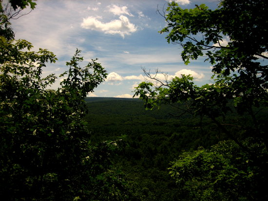 Foto de Pocono Environmental Education Center