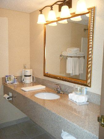 Holiday Inn Express Murrysville/Delmont: Roomy bathroom