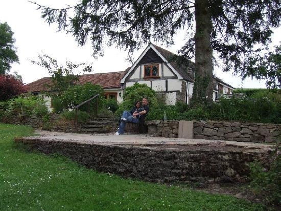 Little Acre Bed & Breakfast: Garden