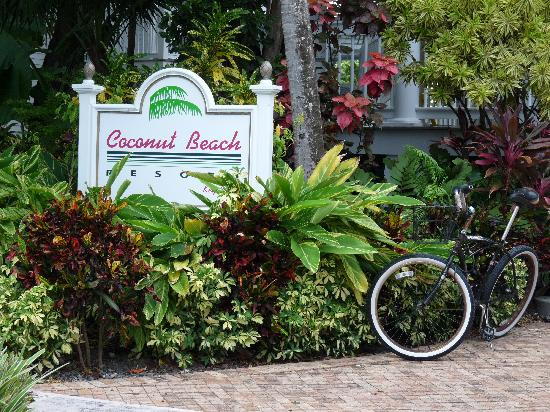Coconut Beach Resort: The grounds are nicely maintained.