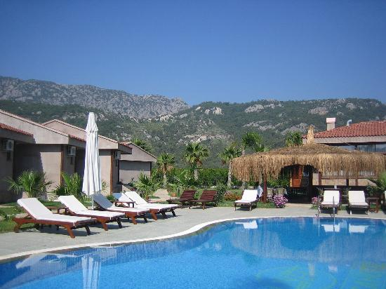 Nerissa Hotel : The beautiful grounds of the hotel