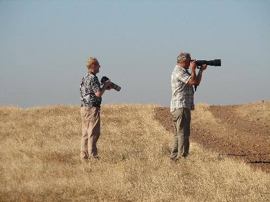 "Quinta do Barranco da Estrada: "" lets go birding """