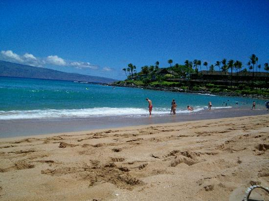 Napili Shores Maui by Outrigger: Never overcrowded at the beach