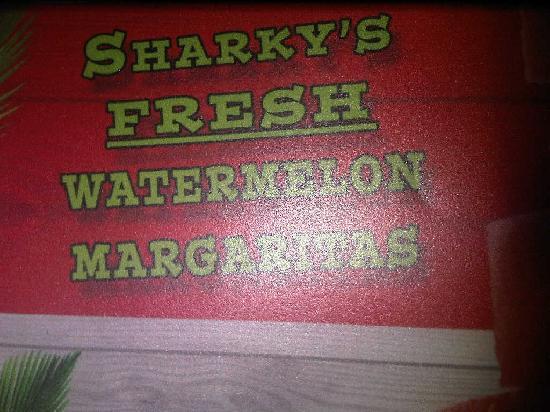 Sharky's Cantina: Sharky's