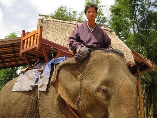 Elephant Lodge: Best Mahout at Elephant Village
