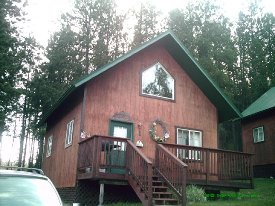Our comfy cabin picture of elk haven vacation cabins for Cabins near custer sd