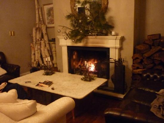 Edgelinks Country House: fire place running 24/7