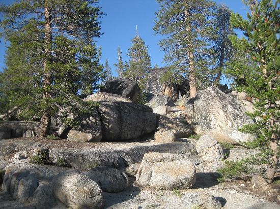 White Wolf Campground: Rocks at campground