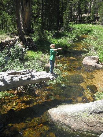White Wolf Campground: Playing in the river at the campground