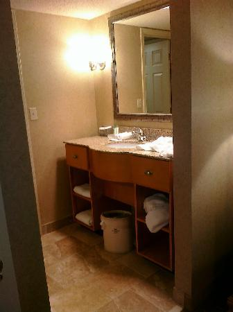 Homewood Suites by Hilton Indianapolis-Keystone Crossing: sink area