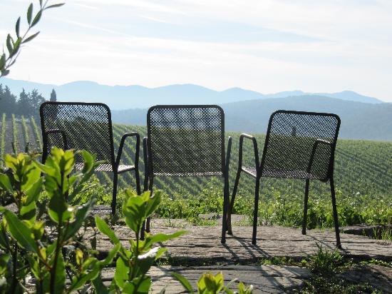 Hotel Residence SanSano: Vineyard view