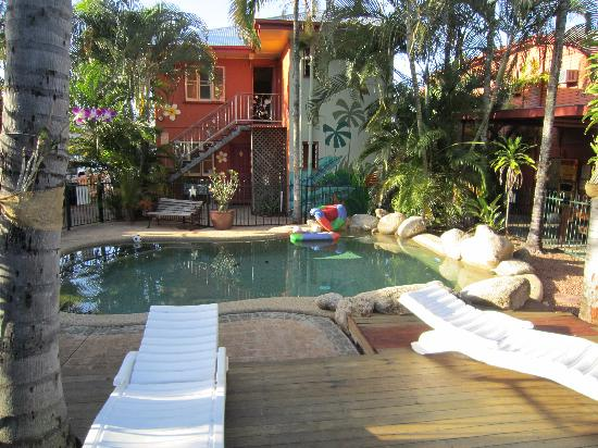 Travellers Oasis Backpackers: Paradise at the poolside
