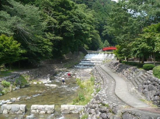 Gero, Japón: 朝市にいく途中の公園、画になるね