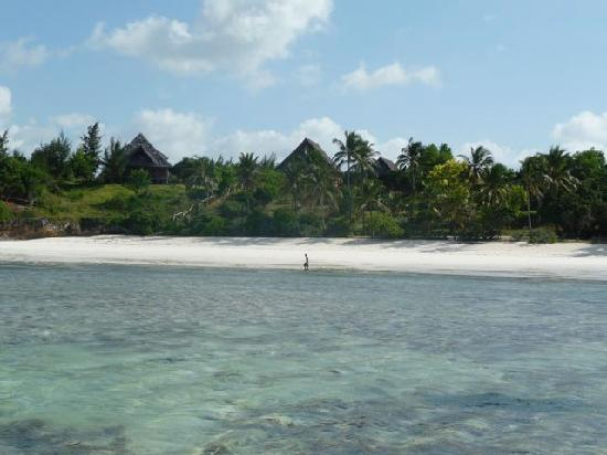 Michamvi, Tanzanie : nos bungalows