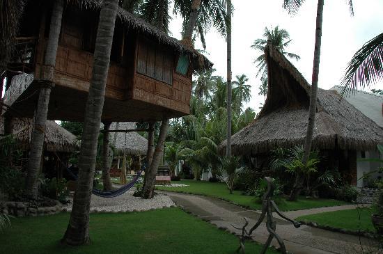 El Dorado Beach Resort: Baumhauszimmer