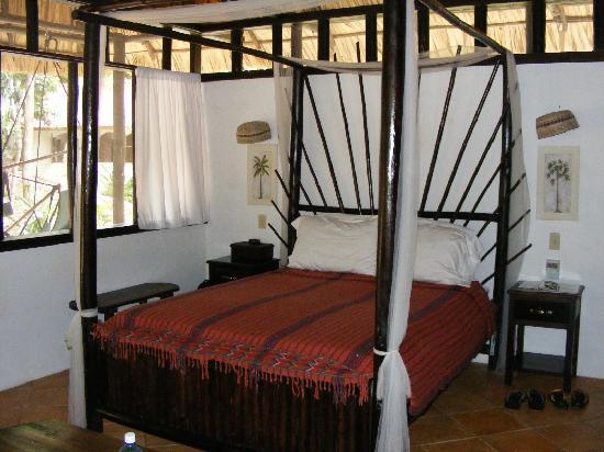 Table Rock Jungle Lodge: Inside MotMot