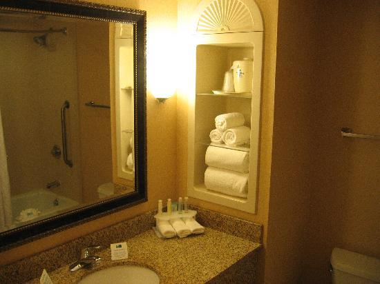 Holiday Inn Express & Suites Florence I-95 & I-20 Civic Ctr: Room bathroom
