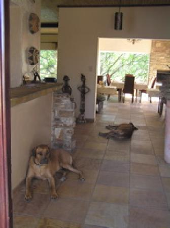 Guesthouse Terra Africa : unser erster besuch in 2004