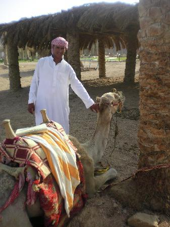 Sea Sun Hotel Dahab: Ramadan and his camels!