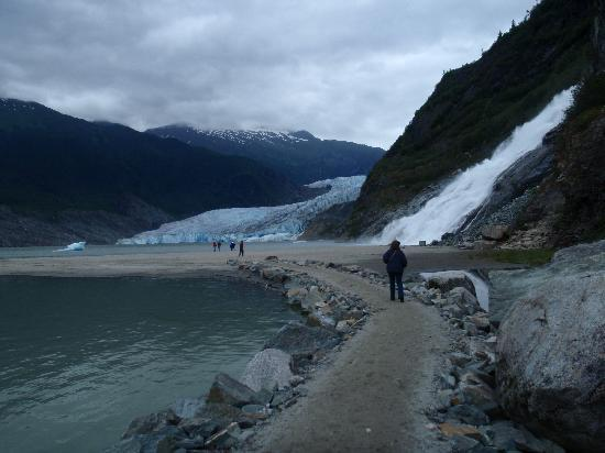 Mendenhall Glacier Visitor Center: On the Nugget Falls Trail