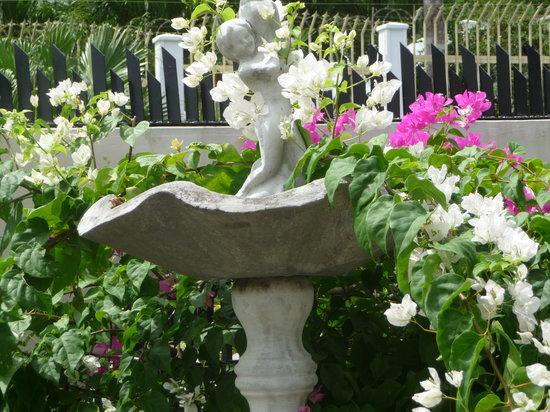 Pequeno Paraiso: Fountain