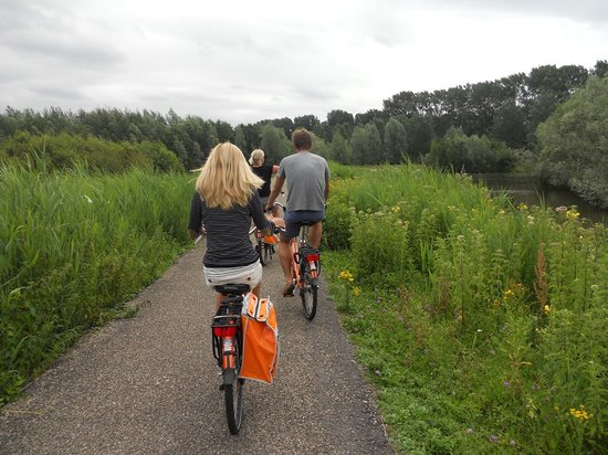 Joy Ride Tours: Countryside Tour Trail