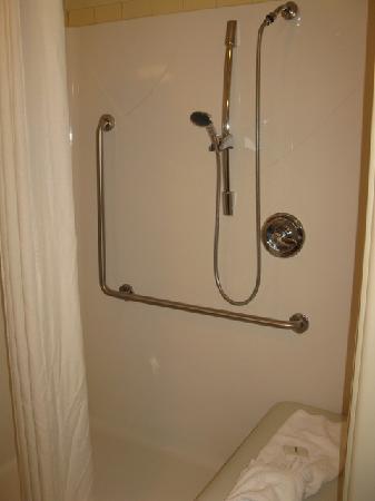 Quality Inn Airport: Handicap/Accessibility Unit - Bathroom