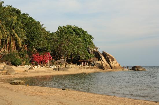 Harmony Beach Resort: Strand des Harmony Beach