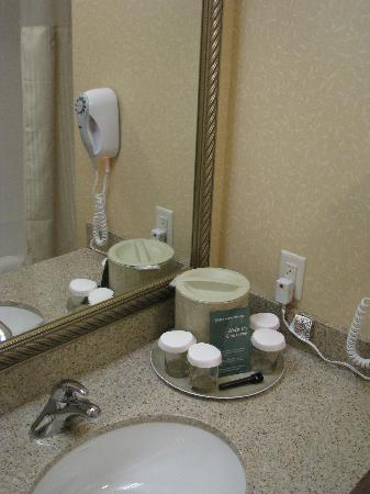 Fairfield Inn & Suites Kelowna : Bathroom