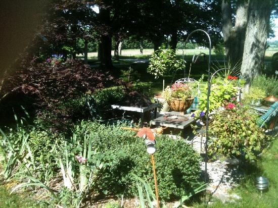 Sleeping Bear Bed and Breakfast : garden