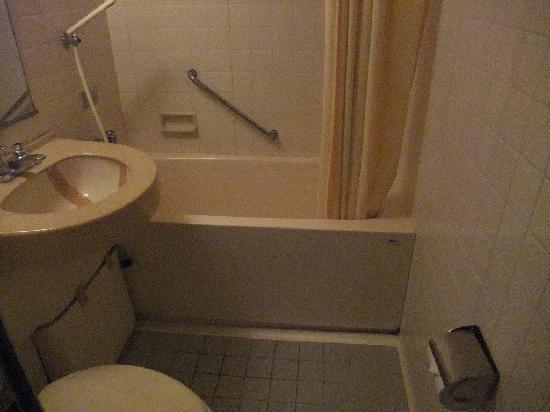 Ikebukuro Royal Hotel Higashiguchi-ten: バスルーム
