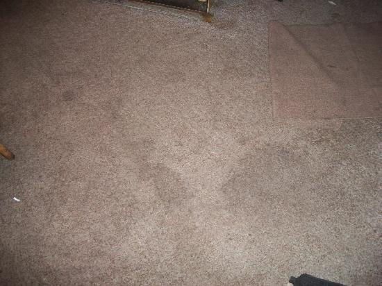 Buck-N-Bass Resort: Stains on carpet